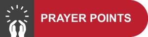 PrayerPointsButtonProfessional